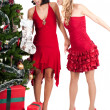 Happy women with Christmas presents — Foto de stock #4089006