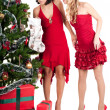 Happy women with Christmas presents — Stockfoto #4136538