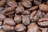 Caffee beans — Stock Photo