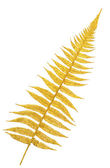 Gold branch of a fern — Stock Photo