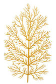 Gold branch — Stock Photo