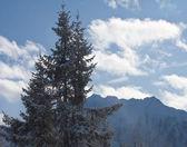 Mountains under snow. Ski resort Schladming . Austria — Stock Photo