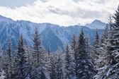 Mountains under snow . Ski resort Schladming . Austria — Stock Photo