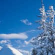 Stok fotoğraf: Mountains under snow. Ski resort Schladming . Austria