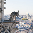 View of Paris from Notre Dame de Paris. France. — Foto Stock