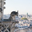 View of Paris from Notre Dame de Paris. France. - Stock Photo