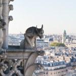 View of Paris from Notre Dame de Paris. France. — Stock Photo #4833795