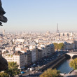 View of Paris from Notre Dame de Paris. France. — Stock Photo
