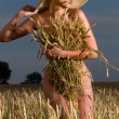 Woman in a wheat field - Stock Photo