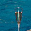 Glass of champagne — Foto de Stock