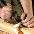 carpinteiro — Foto Stock