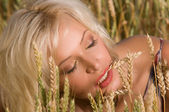 Blonde sitting on a field of wheat — Stock Photo