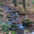 Flow of water among the stones and leaves — Stock Photo