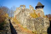 Castello di nevytsky a zakarpattya — Foto Stock