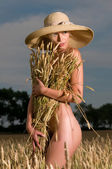 Nude woman in a wheat field — Stock Photo