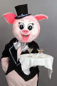 A man dressed as a pig — Stock Photo