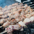 Roasted meat on the fire - Stockfoto