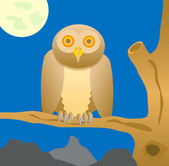 Owl sits on tree in the night — Stock Photo