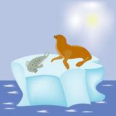 Seal on block of ice — Stock Vector