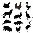 Stock Vector: Silhouettes of beasts and birds
