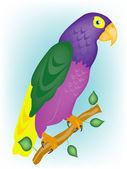 Varicoloured papegoja på gren — Stockvektor