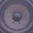 Loudspeaker — Stock Photo #4288724