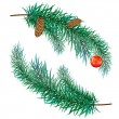 Stock Vector: Pine branch with cones and toy