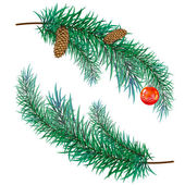 Pine branch with cones and toy — Vector de stock