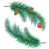 Větev borovice s kužely a hračky — Stock vektor