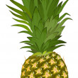 Pineapple — Image vectorielle