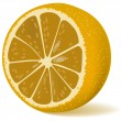 Juicy lemon — Stockvectorbeeld