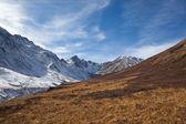 Montañas de sayan pastizales alpinos — Foto de Stock