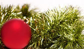 New year's red ball with fir — Stock Photo