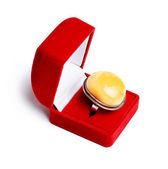 Grand sceau d'ambre jaune — Photo