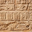 Old egypt hieroglyphs — Stock Photo #4556886