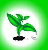 Bella foglia verde — Vettoriale Stock