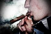 Smoking cigars — Stock Photo