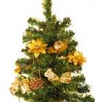 Christmas tree, isolated — Stock Photo
