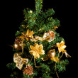 Christmas tree, on a black background — Stock Photo