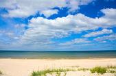 Sandy shore of the Sea — Stock Photo