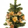 Christmas tree, isolated — Stock Photo