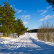 Winter landscape — Stock Photo #4917027