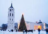 Christmas tree in Vilnius — Stock Photo