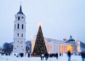 Christmas tree in Vilnius — Stock Photo