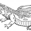 Stockvektor : Crocodile