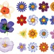 Royalty-Free Stock Vector Image: Set of flower graphics vector