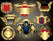 Collection of the gold heraldry — Stock Vector