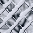Chain-link. Winter. Abstract. — Stock Photo