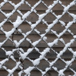 Stock Photo: Chain-link. Winter. Abstract.