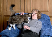 The old woman stroke a cat — Stock Photo
